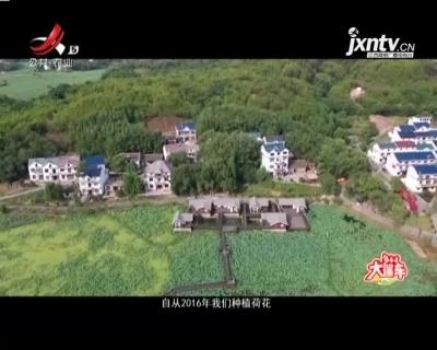 稻花香里20211011 乡村大篷车——上饶市横峰县莲荷乡