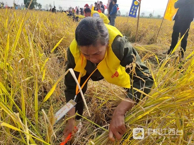 盛世华年 2021中国农民丰收节(瑞昌活动)盛大启幕