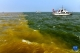 大河奔涌,奏响新时代澎湃乐章——习近平总书记考察黄河入海口并主持召开深入推动黄河流域生态保护和高质量发展座谈会纪实