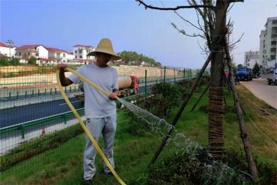 永修县全力做好昌九高速生态提升绿化工程养护工作