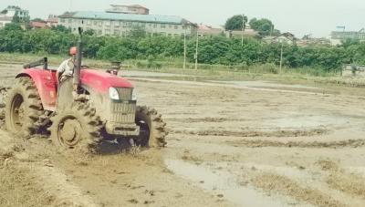 云山集团杨家嘴村:百亩农田被淹 村民自救复生产
