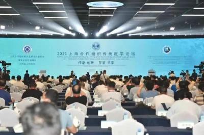 2021上海合作组织传统医学论坛在南昌盛大开幕