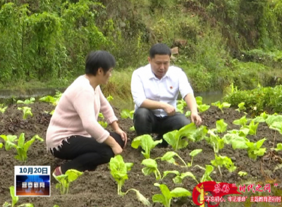 夏凌:情系山村為扶貧