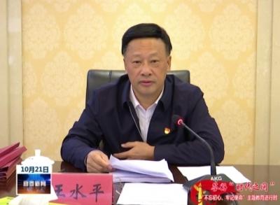 王水平主持召開市政府黨組主題教育調研成果交流會