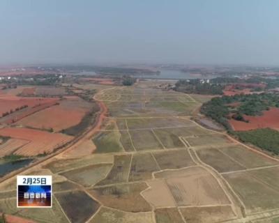 樟樹:6.6萬畝高標準農田建設項目全面復工
