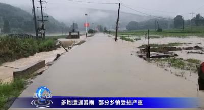 多地遭遇暴雨  部分鄉鎮受損嚴重