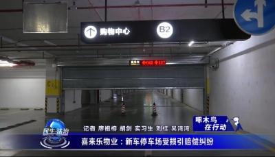 喜來樂物業:新車停車場受損引賠償糾紛