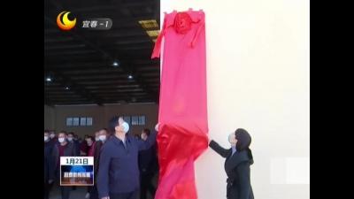 豐城麻鴨鴨苗交易集散中心暨壹號麻鴨孵化專業合作社揭牌成立