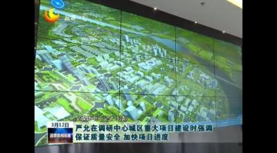 嚴允在調研中心城區重大項目建設時強調 保證質量安全 加快項目進度