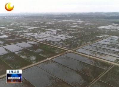 樟樹:全速推進6.6萬畝高標準農田建設