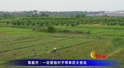 陳毅杰:一定要給村子帶來巨大變化