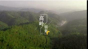 【江西是個好地方——福地吉安】高嶺宿集