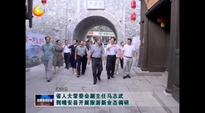 省人大常委會副主任馬志武到靖安縣開展旅游新業態調研