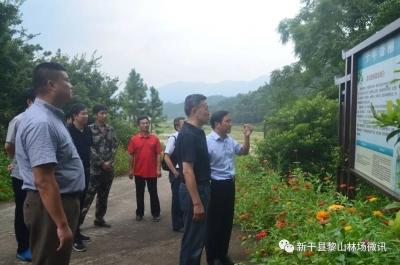 省国开行行长吴守华到新干县黎山林场调研指导