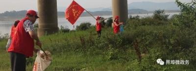 """【界埠镇新时代文明实践活动】一大早,界埠这些人来到赣江堤边""""捡宝"""""""