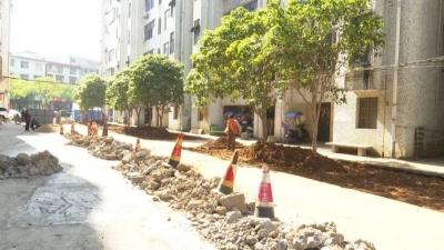 市政园林所对县城背街小巷提升改造