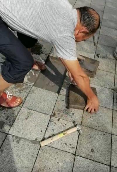 县林业局开展湄湘河湿地公园内人行道地砖修补工作