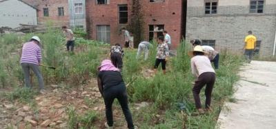 麦㙦镇开展节前人居环境整治工作