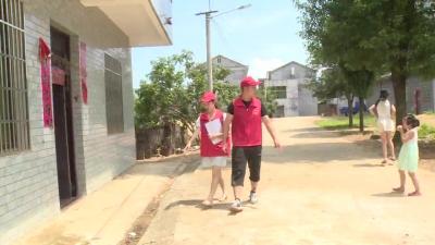 七琴镇:凝聚青春志愿力量  改善农村人居环境