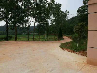 新干县竹林林场大力推进秀美林场建设