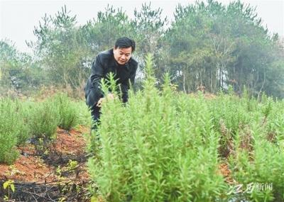 奋斗在广袤田野的江西省最美扶贫干部