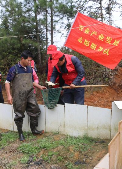 新干:农业科技送下乡 助力春耕生产