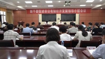 全县促进非公有制经济发展领导小组会议召开