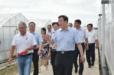 刘奇书记专题调研种业发展