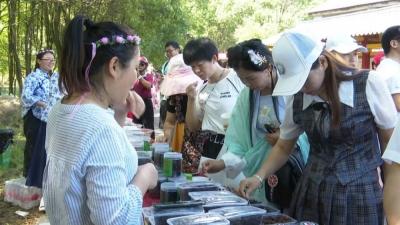 长乐庵风景区举办第一届文化旅游节