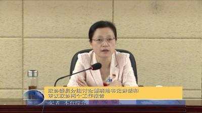 政协委员分组讨论谭晓艳书记讲话和审议政协两个工作报告