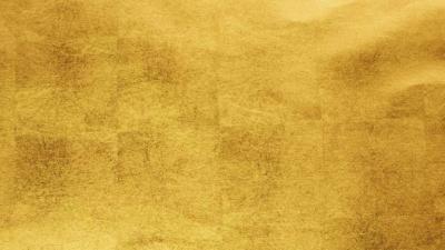 新干海木源大直播-江南青铜王国