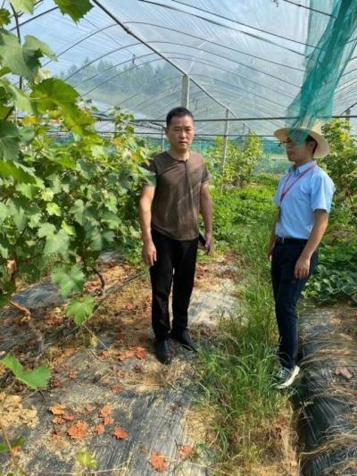 沂江乡多措并举,保障中秋、国庆期间农产品质量安全