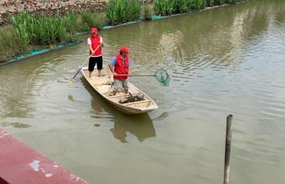 荷浦乡人居环境整治助力乡村振兴