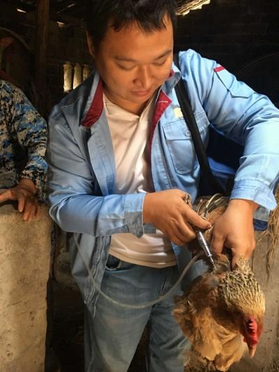 荷浦乡开展秋季动物防疫工作