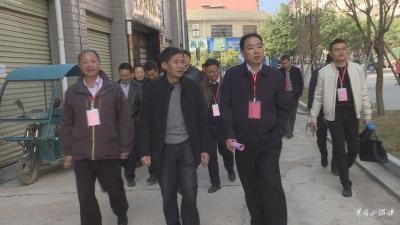 人大代表专项视察红星城区小区改造暨物业管理工作