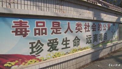 鹅岭乡积极开展禁毒宣传活动