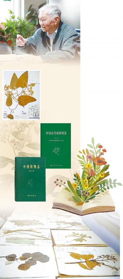 醉心植物分类学七十载,94岁仍伏案办公,王文采—— 他为中国植物建档案(自然之子)