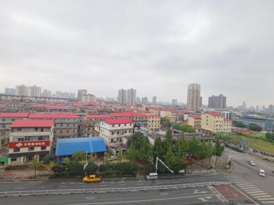 """江西南昌青山湖区打造景美业兴人和城中""""春"""""""