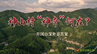 """神山村""""神奇""""何在?——井冈山深处觅答案"""