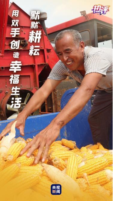 热评丨致敬农民 金秋的每一种颜色都代表着收获