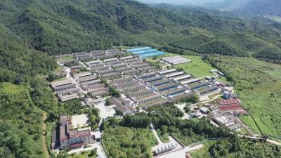 井冈山两家企业通过国家首批非洲猪瘟无疫小区评估