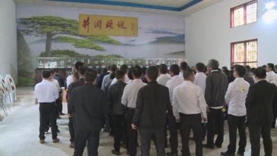 网络中国节·清明   龙市镇开展清明祭扫活动