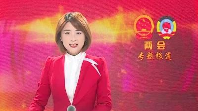 【聚焦两会】危岩参加政协联组讨论