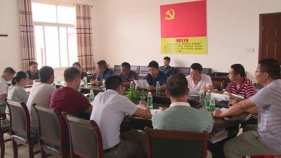 双村镇召开院士工作站产业规划布局协商会