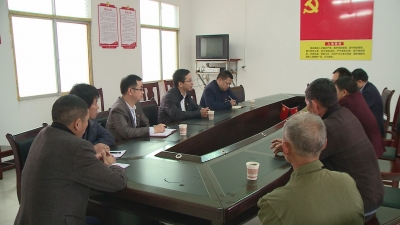 肖向前深入枫江镇调研指导主题教育开展情况