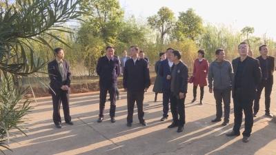 市政协到吉水县开展乡村环境常态长效治理视察活动