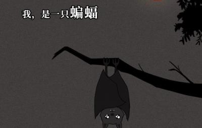 一只蝙蝠的自述在朋友圈火了:千万不要再吃野味了!