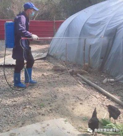 盘谷镇:多措并举,扎实做好春季畜禽防疫工作