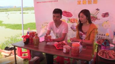 吉水县开展2020年特色农产品线上营销活动