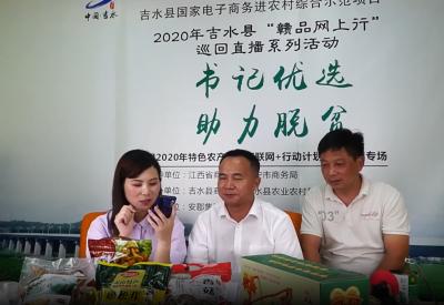 双村镇党委书记直播带货 助力消费扶贫